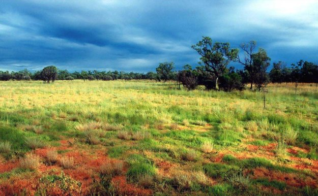 Storm season in the Australian tropical savanna.